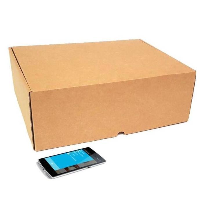Cajas de cartón automontables F-427 de 38-30-13