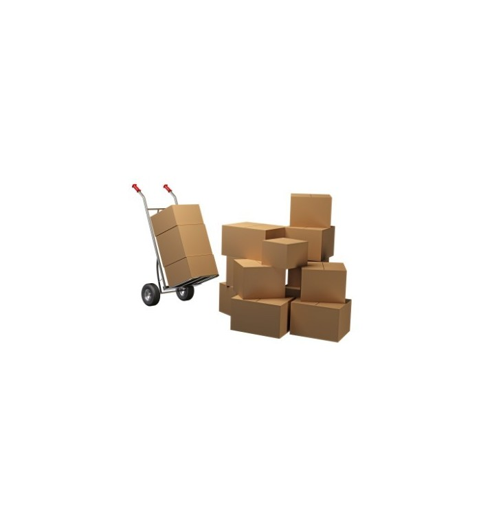Pack de mudanza mediana