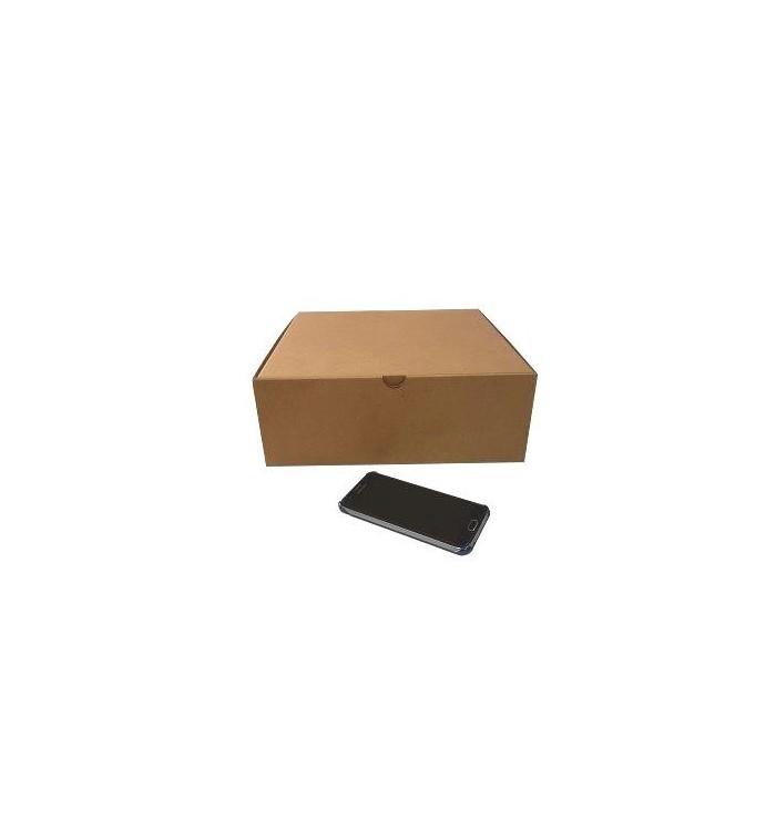 Cajas de cartón automontables F-421 de 31-31-11