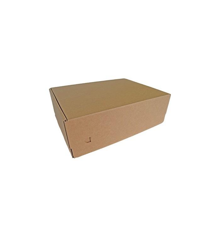 Cajas para Envíos 34-25-11 (Doble Cierre Adhesivo)